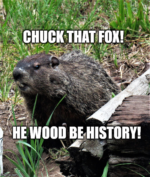 wouldchuck | CHUCK THAT FOX! HE WOOD BE HISTORY! | image tagged in wouldchuck | made w/ Imgflip meme maker