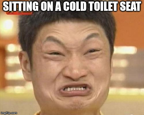 Impossibru Guy Original | SITTING ON A COLD TOILET SEAT | image tagged in memes,impossibru guy original | made w/ Imgflip meme maker