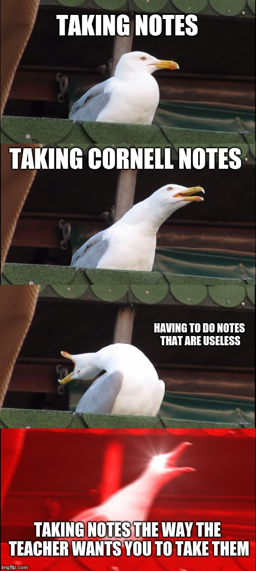 Inhaling Seagull | TAKING NOTES TAKING CORNELL NOTES HAVING TO DO NOTES THAT ARE USELESS TAKING NOTES THE WAY THE TEACHER WANTS YOU TO TAKE THEM | image tagged in memes,inhaling seagull | made w/ Imgflip meme maker