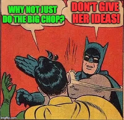Batman Slapping Robin Meme | WHY NOT JUST DO THE BIG CHOP? DON'T GIVE HER IDEAS! | image tagged in memes,batman slapping robin | made w/ Imgflip meme maker