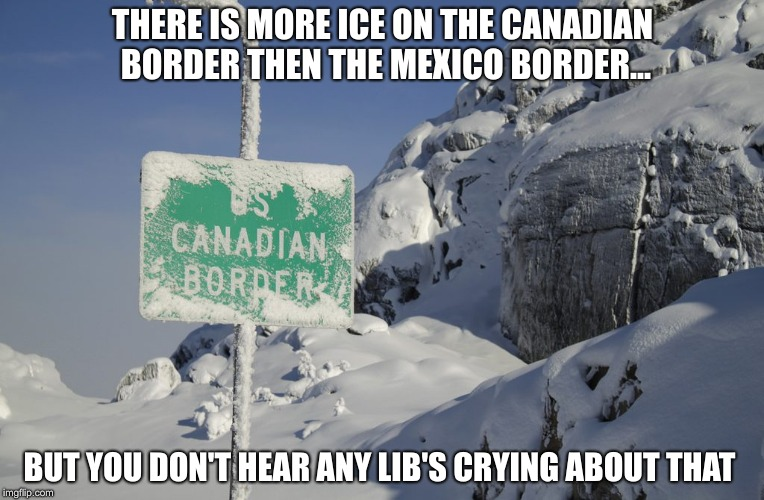And i thought they cried about anything | THERE IS MORE ICE ON THE CANADIAN BORDER THEN THE MEXICO BORDER... BUT YOU DON'T HEAR ANY LIB'S CRYING ABOUT THAT | image tagged in usa,mexico wall,canada,secure the border,open borders,ice | made w/ Imgflip meme maker