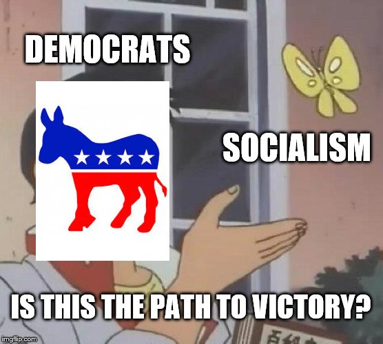 Is This The Path To Victory | DEMOCRATS SOCIALISM IS THIS THE PATH TO VICTORY? | image tagged in memes,is this a pigeon,funny,democrats,democracy,socialism | made w/ Imgflip meme maker