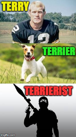Why they had to let me go from Sesame Street. |  TERRY; TERRIER; TERRIERIST | image tagged in memes,terry bradshaw,terrific,no regrets | made w/ Imgflip meme maker
