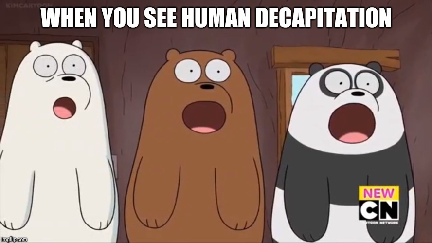 We Blown Bears | WHEN YOU SEE HUMAN DECAPITATION | image tagged in we blown bears | made w/ Imgflip meme maker