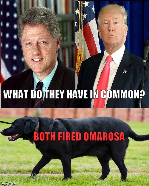 What does Clinton and Trump have in common? | WHAT DO THEY HAVE IN COMMON? BOTH FIRED OMAROSA | image tagged in funny,gifs,memes,donald trump,omarosa | made w/ Imgflip meme maker