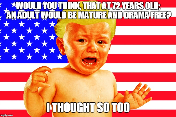 I thought so too | WOULD YOU THINK, THAT AT 72 YEARS OLD; AN ADULT WOULD BE MATURE AND DRAMA FREE? I THOUGHT SO TOO | image tagged in trump,baby,immature,drama queen | made w/ Imgflip meme maker