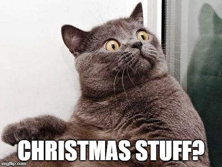 Surprised cat | CHRISTMAS STUFF? | image tagged in surprised cat | made w/ Imgflip meme maker