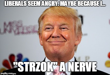 "Donald trump approves | LIBERALS SEEM ANGRY. MAYBE BECAUSE I... ""STRZOK"" A NERVE 