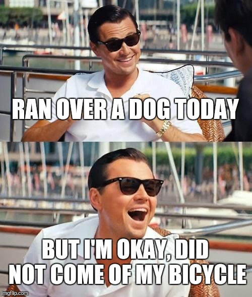 Dog Walkers Leash Your Pets | RAN OVER A DOG TODAY BUT I'M OKAY, DID NOT COME OF MY BICYCLE | image tagged in memes,leonardo dicaprio wolf of wall street,dogs | made w/ Imgflip meme maker