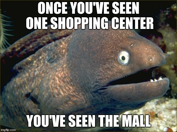 bad joke eel | ONCE YOU'VE SEEN ONE SHOPPING CENTER YOU'VE SEEN THE MALL | image tagged in bad joke eel | made w/ Imgflip meme maker