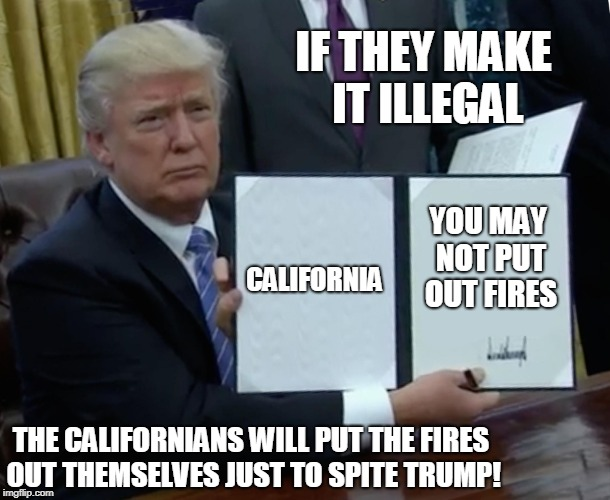Trump Bill Signing Meme | CALIFORNIA YOU MAY NOT PUT OUT FIRES IF THEY MAKE IT ILLEGAL THE CALIFORNIANS WILL PUT THE FIRES OUT THEMSELVES JUST TO SPITE TRUMP! | image tagged in memes,trump bill signing | made w/ Imgflip meme maker