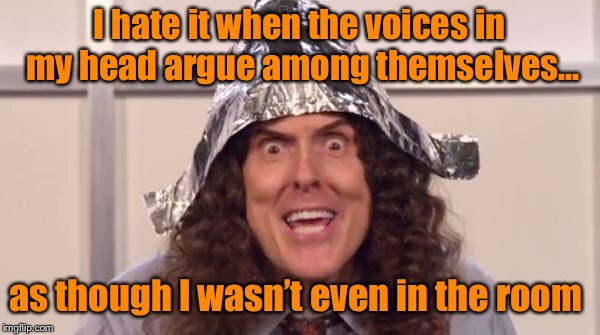 weird al foilhat | I hate it when the voices in my head argue among themselves... as though I wasn't even in the room | image tagged in weird al foilhat,funny meme | made w/ Imgflip meme maker