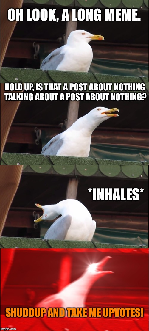 OH LOOK, A LONG MEME. HOLD UP, IS THAT A POST ABOUT NOTHING TALKING ABOUT A POST ABOUT NOTHING? *INHALES* SHUDDUP AND TAKE ME UPVOTES! | image tagged in memes,inhaling seagull | made w/ Imgflip meme maker