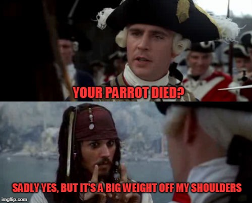 YOUR PARROT DIED? SADLY YES, BUT IT'S A BIG WEIGHT OFF MY SHOULDERS | image tagged in pirates of the caribbean | made w/ Imgflip meme maker
