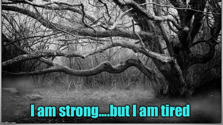 Life is just so ... tiring  | I am strong....but I am tired | image tagged in strong,tired | made w/ Imgflip meme maker