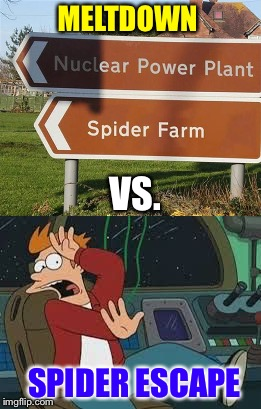Parker!  Get down there and see what's going on! | MELTDOWN VS. SPIDER ESCAPE | image tagged in fry,scared,spider,memes,funny | made w/ Imgflip meme maker