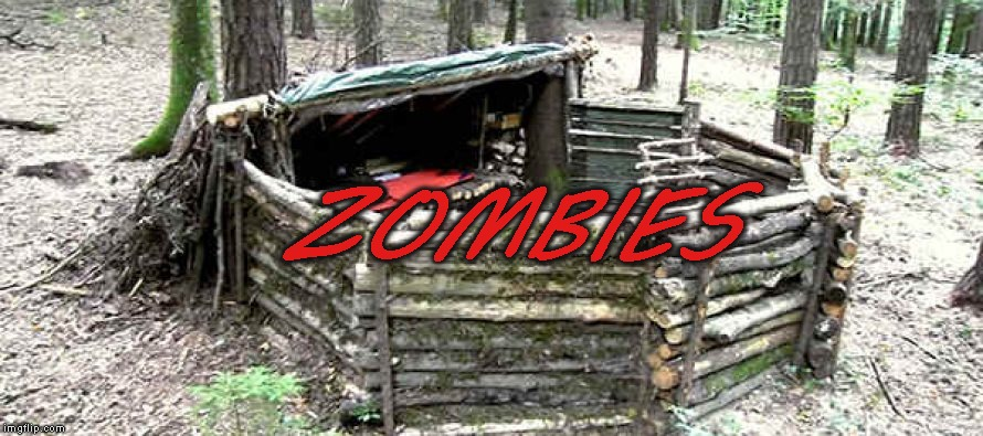 Zombie survival camp | ZOMBIES | image tagged in survival,camping | made w/ Imgflip meme maker