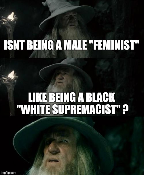 "Can't there be only one? | ISNT BEING A MALE ""FEMINIST"" LIKE BEING A BLACK ""WHITE SUPREMACIST"" ? 