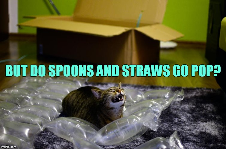 BUT DO SPOONS AND STRAWS GO POP? | made w/ Imgflip meme maker