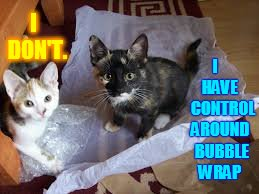 The Bubble Wrap Dilemma   |  I    HAVE    CONTROL AROUND  BUBBLE WRAP; I  DON'T. | image tagged in memes,cats,bubble wrap,control,and,none | made w/ Imgflip meme maker