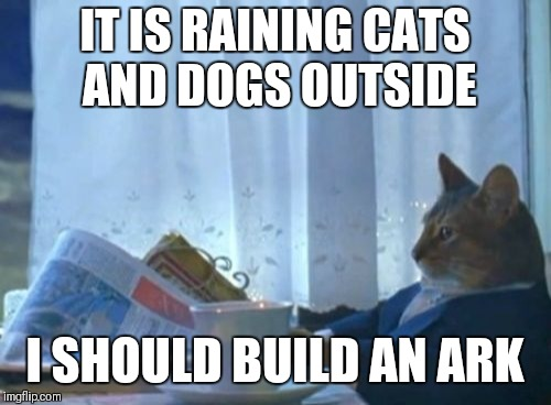Noah cat | IT IS RAINING CATS AND DOGS OUTSIDE I SHOULD BUILD AN ARK | image tagged in memes,i should buy a boat cat,funny,noahs ark,bible | made w/ Imgflip meme maker