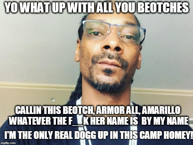 Get My Name Out Your Mouth B's | YO WHAT UP WITH ALL YOU BEOTCHES CALLIN THIS BEOTCH, ARMOR ALL, AMARILLO WHATEVER THE F__K HER NAME IS  BY MY NAME I'M THE ONLY REAL DOGG UP | image tagged in snoop dogg,dog,omarosa | made w/ Imgflip meme maker