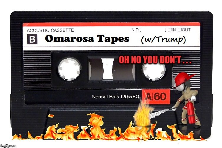 Suddenly, I ALMOST like Omarosa | image tagged in trump,omarosa,n word,secrets | made w/ Imgflip meme maker
