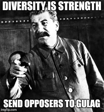 Stalin | DIVERSITY IS STRENGTH SEND OPPOSERS TO GULAG | image tagged in stalin | made w/ Imgflip meme maker