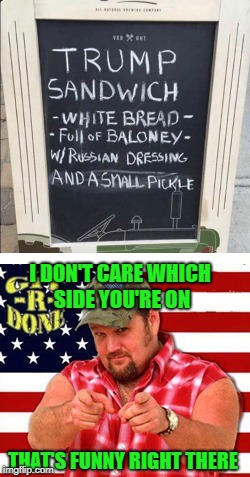 It cracks me up anyways...LOL | I DON'T CARE WHICH SIDE YOU'RE ON THAT'S FUNNY RIGHT THERE | image tagged in trump sandwich,memes,trump,funny,larry the cable guy,git r done | made w/ Imgflip meme maker