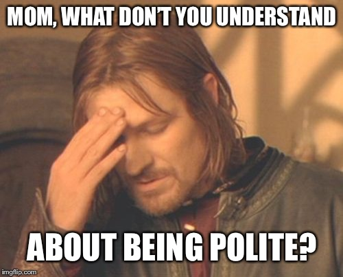 Frustrated Boromir Meme | MOM, WHAT DON'T YOU UNDERSTAND ABOUT BEING POLITE? | image tagged in memes,frustrated boromir | made w/ Imgflip meme maker