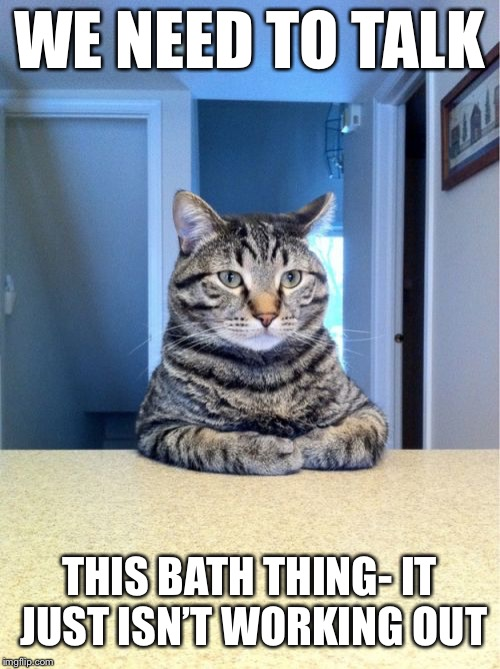 Take A Seat Cat | WE NEED TO TALK THIS BATH THING- IT JUST ISN'T WORKING OUT | image tagged in memes,take a seat cat | made w/ Imgflip meme maker