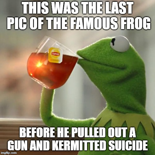But That's None Of My Business |  THIS WAS THE LAST PIC OF THE FAMOUS FROG; BEFORE HE PULLED OUT A GUN AND KERMITTED SUICIDE | image tagged in memes,kermit the frog,hello darkness my old friend | made w/ Imgflip meme maker