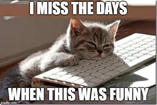 Bored Keyboard Cat | I MISS THE DAYS WHEN THIS WAS FUNNY | image tagged in bored keyboard cat | made w/ Imgflip meme maker