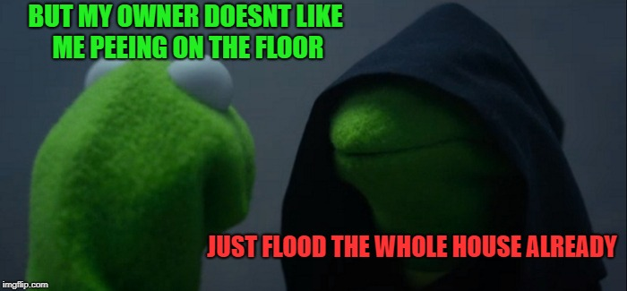 Evil Kermit Meme | BUT MY OWNER DOESNT LIKE ME PEEING ON THE FLOOR JUST FLOOD THE WHOLE HOUSE ALREADY | image tagged in memes,evil kermit | made w/ Imgflip meme maker