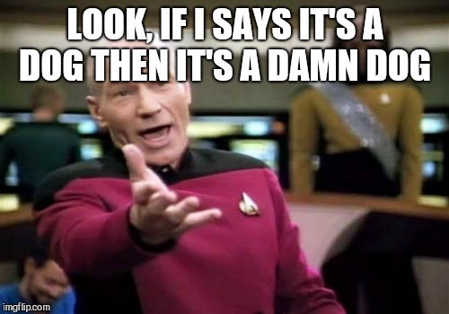 Picard Wtf Meme | LOOK, IF I SAYS IT'S A DOG THEN IT'S A DAMN DOG | image tagged in memes,picard wtf | made w/ Imgflip meme maker