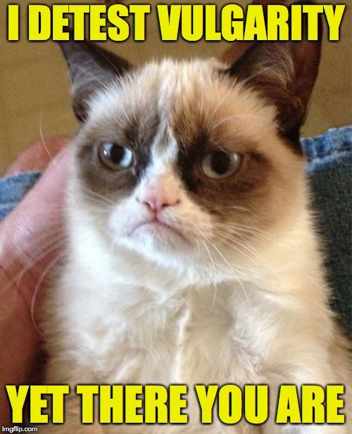 It's complicated. | I DETEST VULGARITY YET THERE YOU ARE | image tagged in memes,grumpy cat,us | made w/ Imgflip meme maker