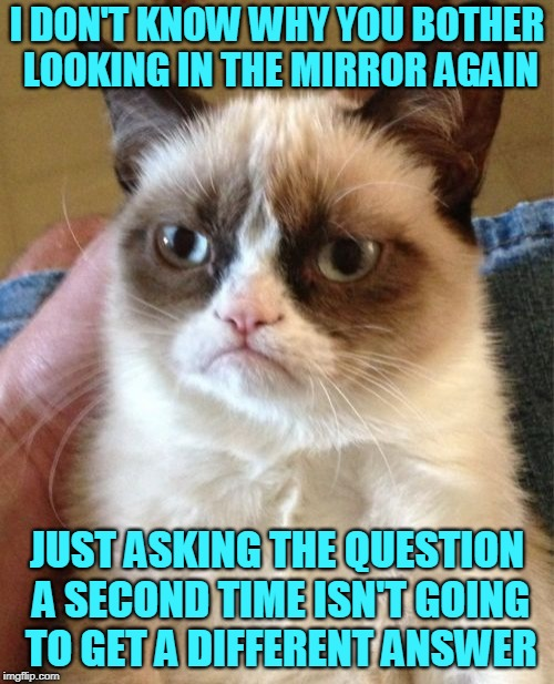 A crack in your façade ( ˘︹˘ ) | I DON'T KNOW WHY YOU BOTHER LOOKING IN THE MIRROR AGAIN JUST ASKING THE QUESTION A SECOND TIME ISN'T GOING TO GET A DIFFERENT ANSWER | image tagged in memes,grumpy cat,grumpy cat insults,mirrors,expectation vs reality,oh snap | made w/ Imgflip meme maker