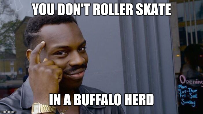 Roll Safe Think About It Meme | YOU DON'T ROLLER SKATE IN A BUFFALO HERD | image tagged in memes,roll safe think about it | made w/ Imgflip meme maker