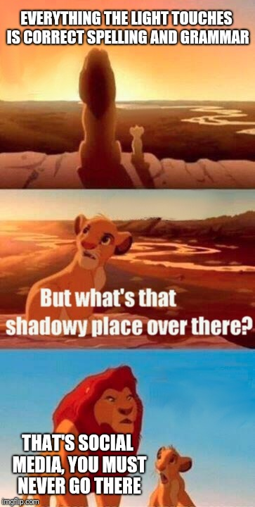 Simba Shadowy Place | EVERYTHING THE LIGHT TOUCHES IS CORRECT SPELLING AND GRAMMAR THAT'S SOCIAL MEDIA, YOU MUST NEVER GO THERE | image tagged in memes,simba shadowy place | made w/ Imgflip meme maker