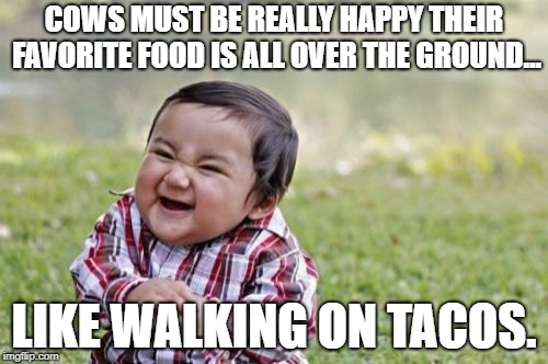Evil Toddler | COWS MUST BE REALLY HAPPY THEIR FAVORITE FOOD IS ALL OVER THE GROUND... LIKE WALKING ON TACOS. | image tagged in memes,evil toddler | made w/ Imgflip meme maker