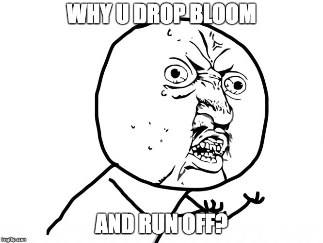 Why u no face | WHY U DROP BLOOM AND RUN OFF? | image tagged in why u no face | made w/ Imgflip meme maker
