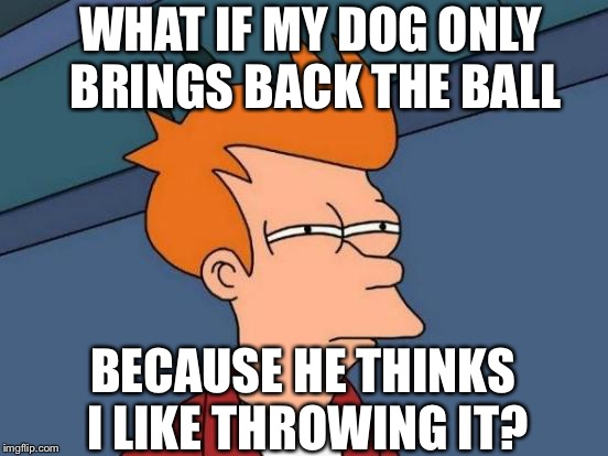 What is the dog thinking? | WHAT IF MY DOG ONLY BRINGS BACK THE BALL BECAUSE HE THINKS I LIKE THROWING IT? | image tagged in memes,futurama fry,funny,dogs,fetch,pets | made w/ Imgflip meme maker