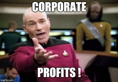 Picard Wtf Meme | CORPORATE PROFITS ! | image tagged in memes,picard wtf | made w/ Imgflip meme maker