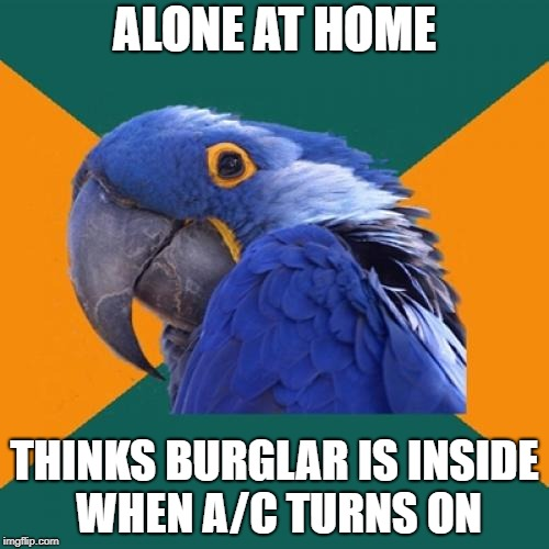 Paranoid Parrot | ALONE AT HOME THINKS BURGLAR IS INSIDE WHEN A/C TURNS ON | image tagged in memes,paranoid parrot | made w/ Imgflip meme maker