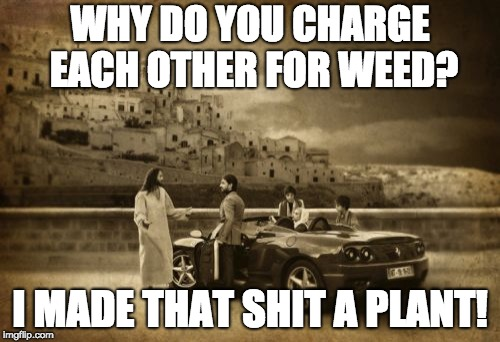 Jesus Talking To Cool Dude | WHY DO YOU CHARGE EACH OTHER FOR WEED? I MADE THAT SHIT A PLANT! | image tagged in memes,jesus talking to cool dude | made w/ Imgflip meme maker