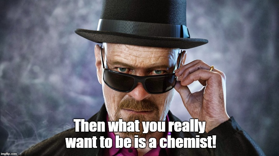 heisemberg | Then what you really want to be is a chemist! | image tagged in heisemberg | made w/ Imgflip meme maker