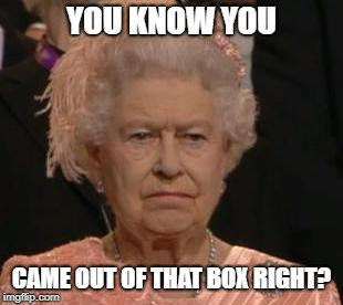 queen | YOU KNOW YOU CAME OUT OF THAT BOX RIGHT? | image tagged in queen | made w/ Imgflip meme maker