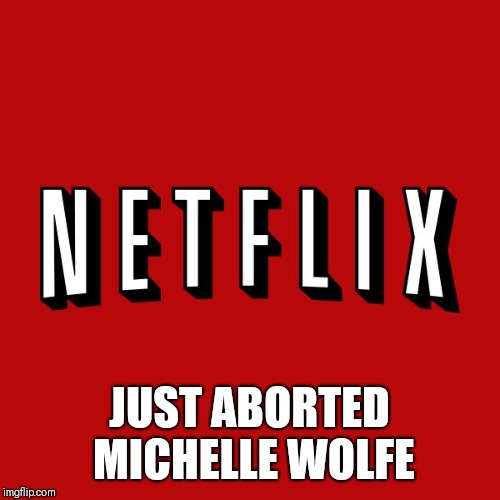 Goddam you Netflix! |  JUST ABORTED MICHELLE WOLFE | image tagged in goddam you netflix | made w/ Imgflip meme maker