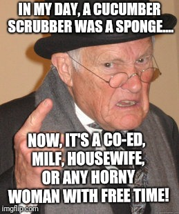Cucumber scrubber  |  IN MY DAY, A CUCUMBER SCRUBBER WAS A SPONGE.... NOW, IT'S A CO-ED, MILF, HOUSEWIFE, OR ANY HORNY WOMAN WITH FREE TIME! | image tagged in memes,back in my day,milf,horny milf,housewife,cucumber | made w/ Imgflip meme maker