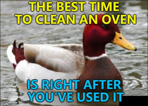 Cleaning ovens - so hot right now :) |  THE BEST TIME TO CLEAN AN OVEN; IS RIGHT AFTER YOU'VE USED IT | image tagged in memes,malicious advice mallard,cleaning | made w/ Imgflip meme maker